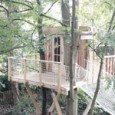 Envie d'une cabane dans un arbre ?